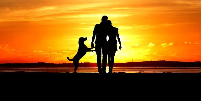 Как обрести гармонию в душе и в сердце. Статья содержит видео!